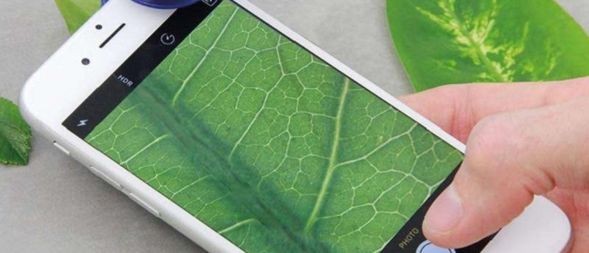 smartfonowy-mikroskop-discovery